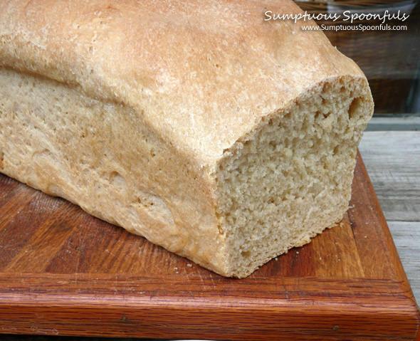 White Whole Wheat Bread  White Whole Wheat Bread