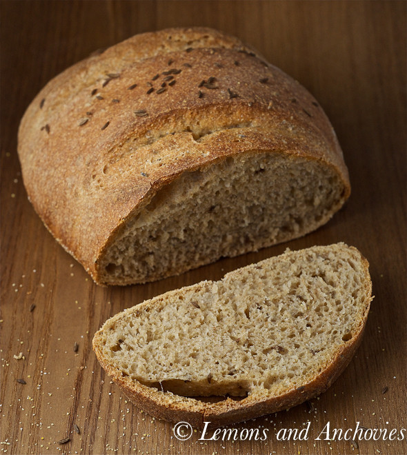 Whole Grain Rye Bread  No Knead Whole Wheat Rye Bread