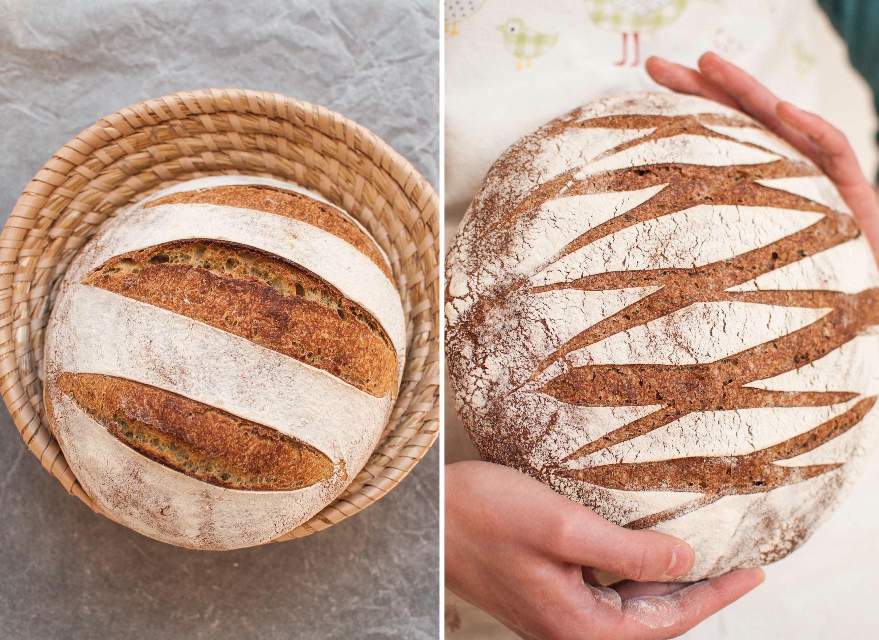 Whole Grain Sourdough Bread  whole grain wheat sourdough breads with wild garlic