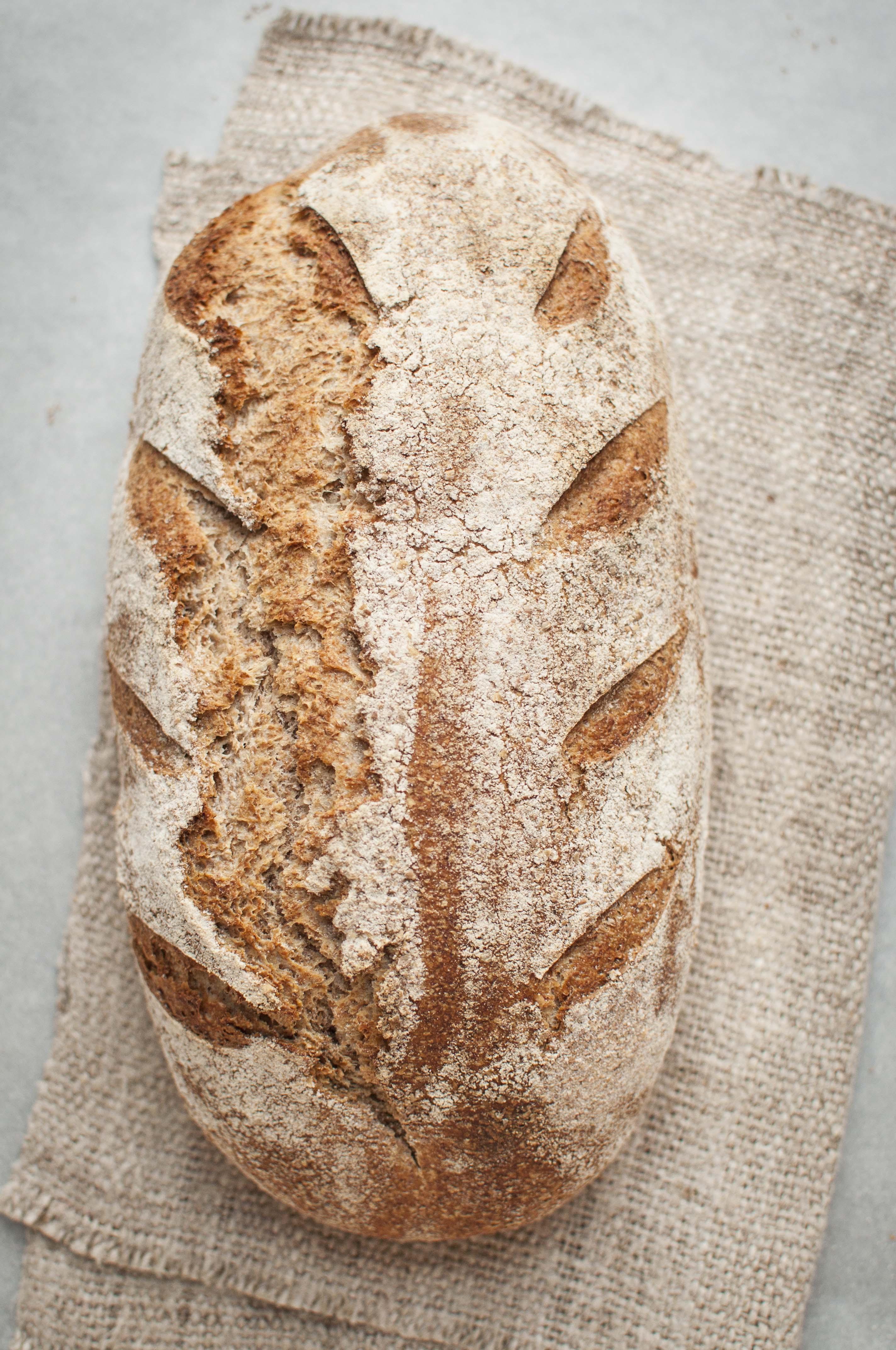 Whole Grain Sourdough Bread  Whole grain wheat sourdough loaf