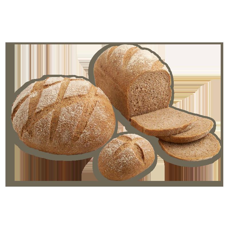 Whole Grain Sourdough Bread  Sourdough Whole Grain