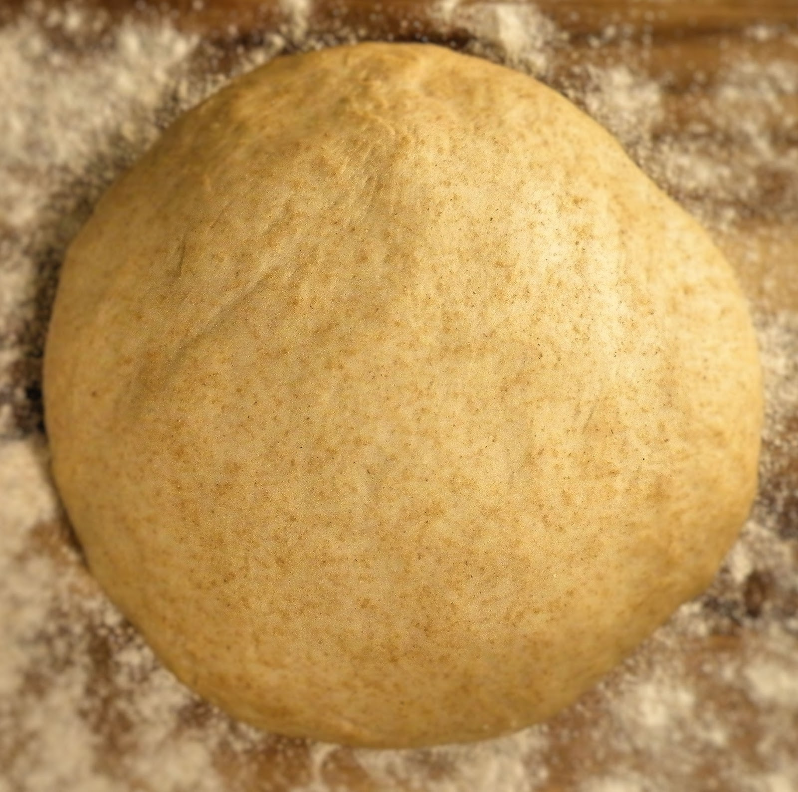 Whole Wheat Pizza Dough  Vittles and Bits Honey Wheat Pizza Dough