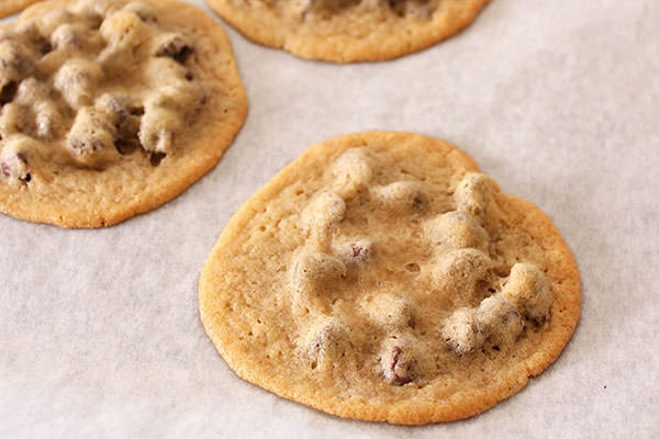 Why Are My Chocolate Chip Cookies Flat  why are my nestle cookies flat