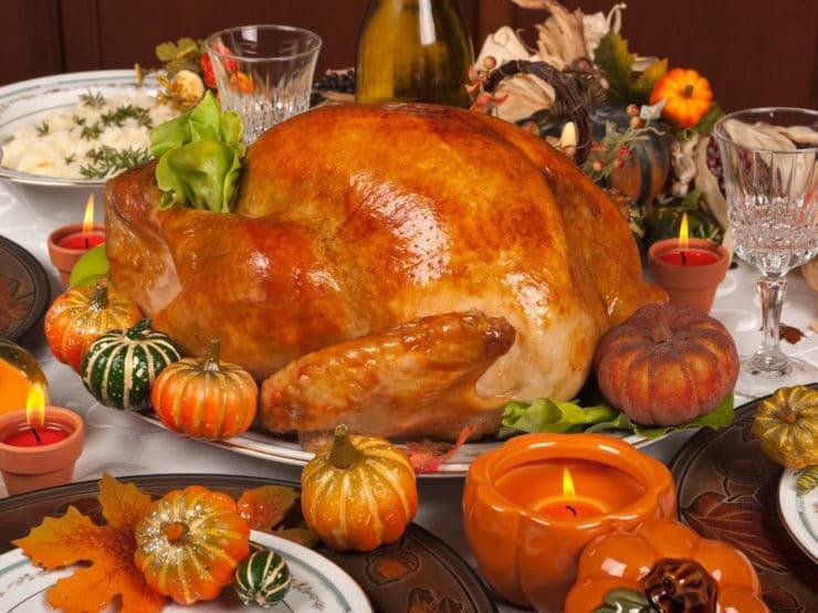 Why Turkey On Thanksgiving  The History of Turkey Fun Turkey Facts