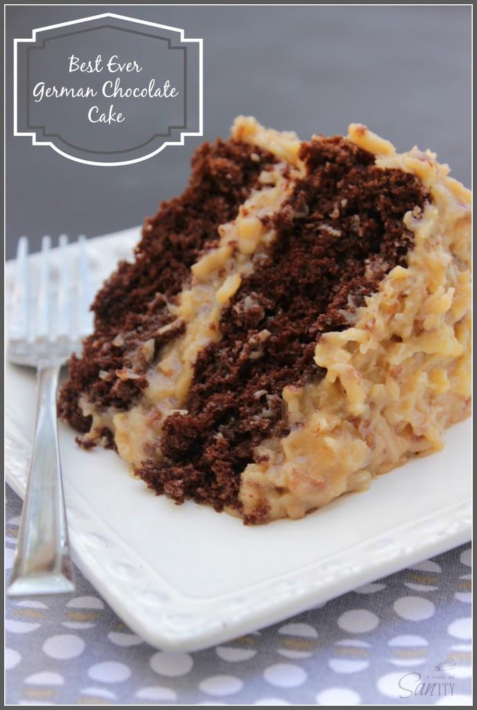 World'S Best Chocolate Cake Recipe  51 Best Chocolate Cake Recipes for 2016