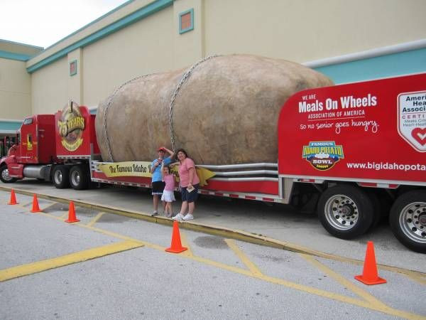Worlds Biggest Potato  Pin by Go BIG or Go Home Blog on World s largest