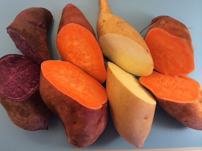 Yams Vs Sweet Potato  Sweet Potato vs Yam