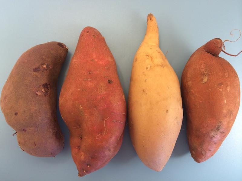 Yams Vs Sweet Potato  Sweet Potato vs Yam