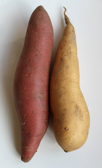 Yams Vs Sweet Potato  The Nutrition Wall What Is The Difference Between Sweet