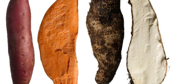 Yams Vs Sweet Potato  11 Strange Facts About Food The Food You Eat Fact Happy