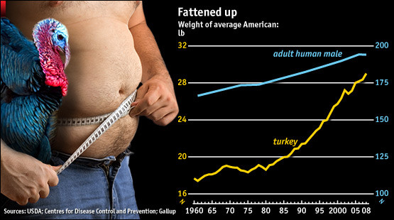Average Thanksgiving Turkey Weight  CARPE DIEM Fattened Up Over Time Turkeys and Americans