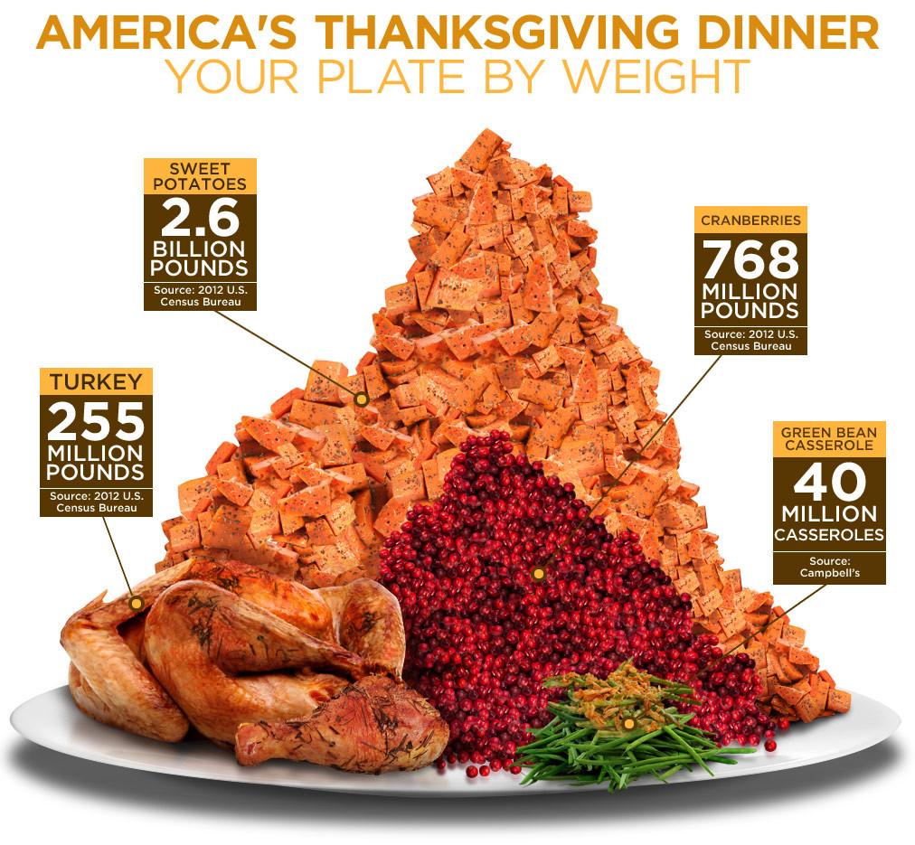 Average Thanksgiving Turkey Weight  Thanksgiving Dinner