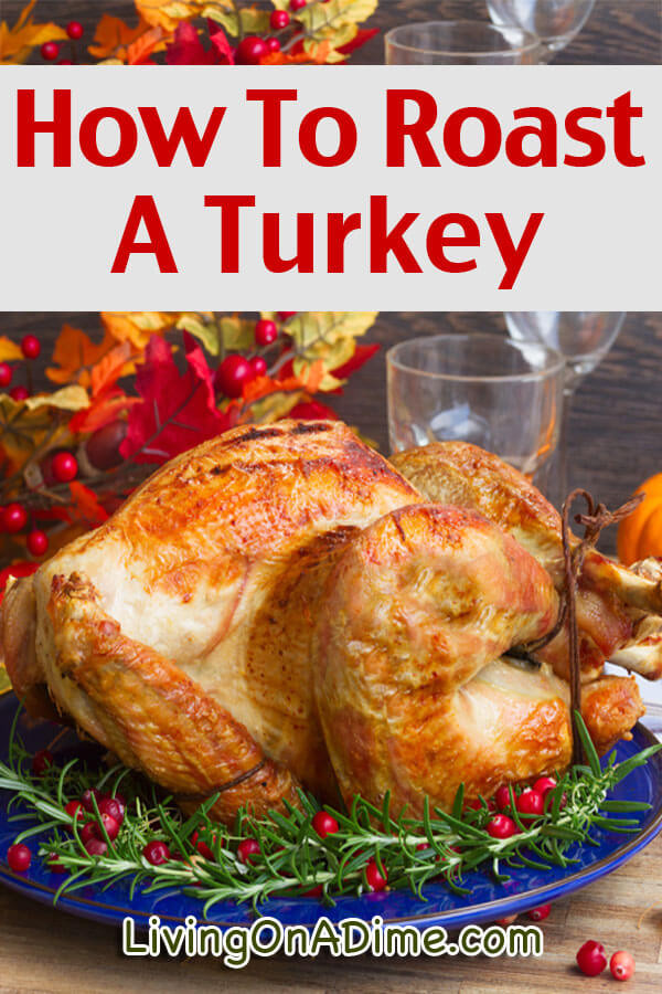 Best Roast Turkey Recipe For Thanksgiving  How To Roast A Turkey Living on a Dime