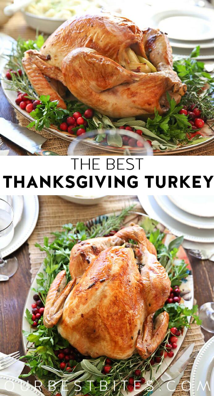 Best Thanksgiving Turkey Recipes  The Best Thanksgiving Turkey