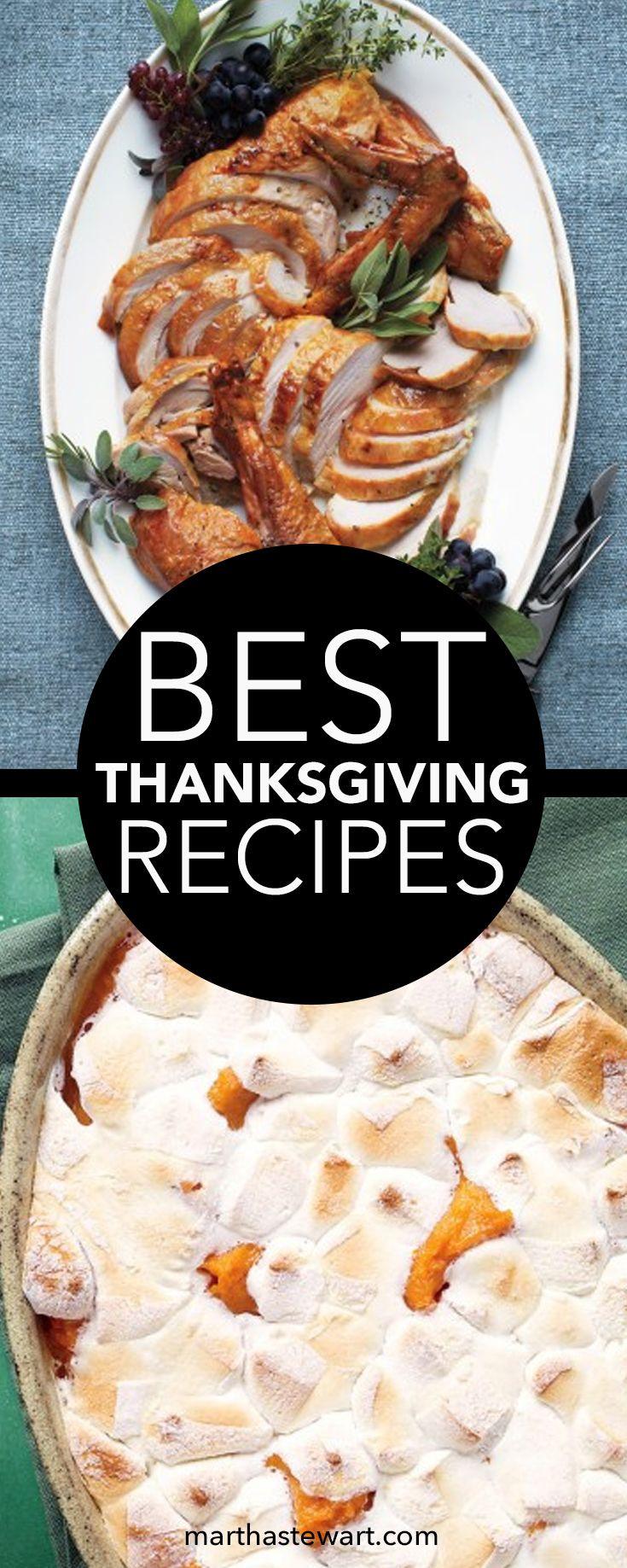 Best Thanksgiving Turkey Recipes  Best 25 Kitchenaid meat grinder ideas on Pinterest