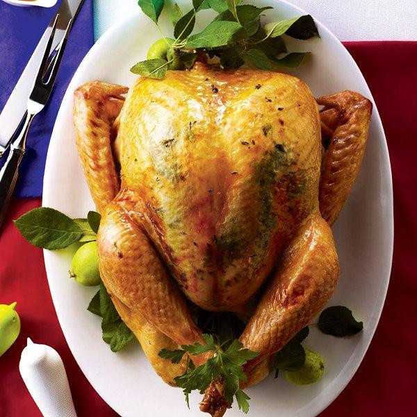 Best Thanksgiving Turkey Recipes  Top 10 tips for a perfect turkey Chatelaine