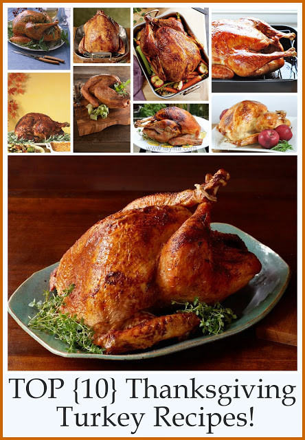 Best Turkey Recipes For Thanksgiving  Top 10 Thanksgiving Turkey Recipes