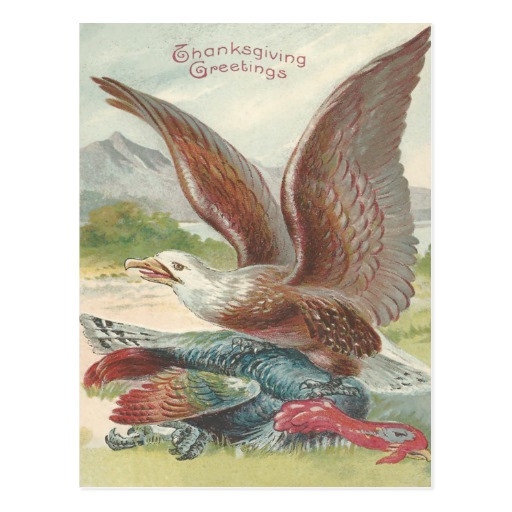 Catching The Thanksgiving Turkey  Bald Eagle Catching Thanksgiving Turkey Postcard