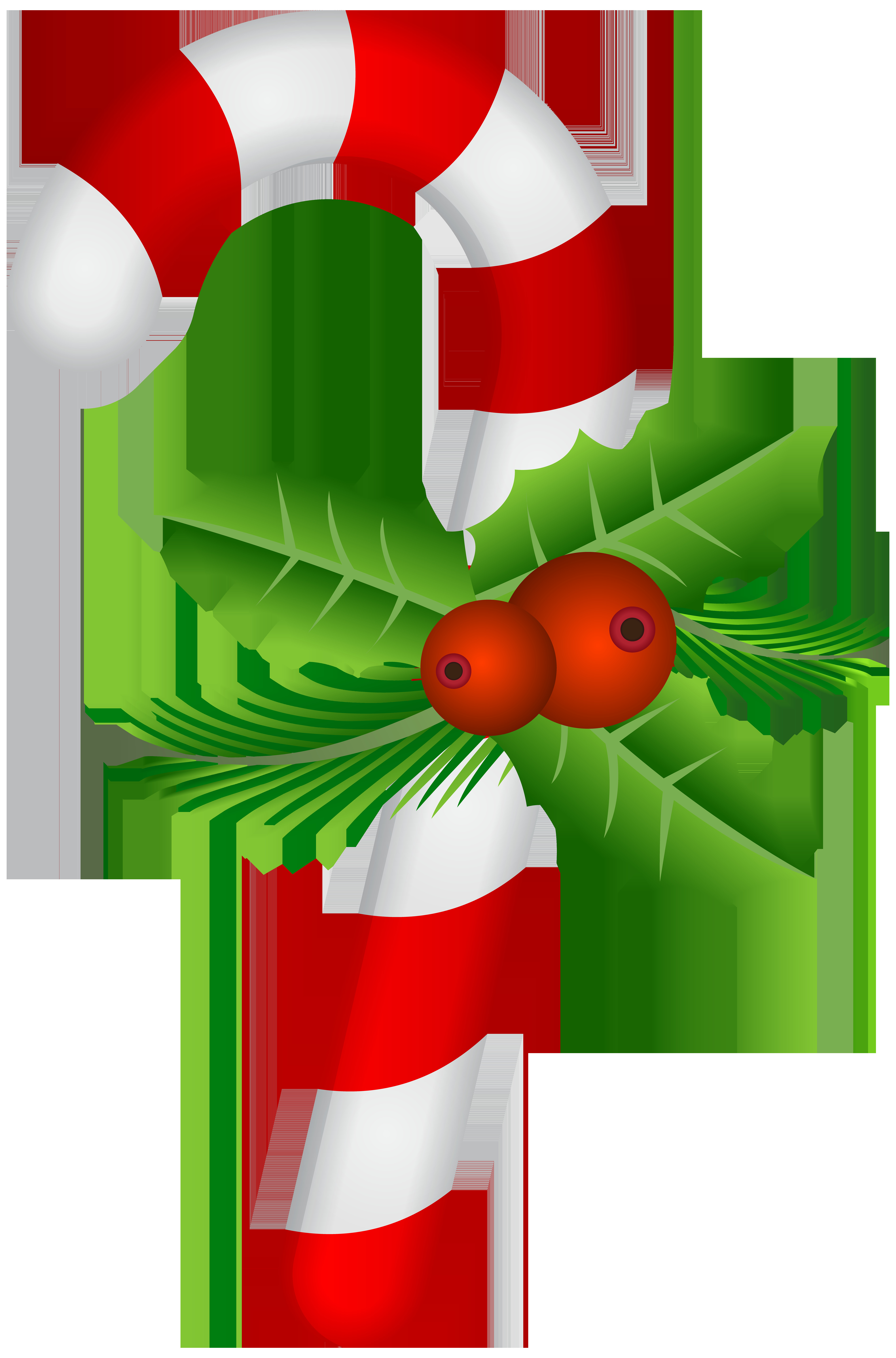 Christmas Candy Cane Images  Candy Cane with Holly Transparent PNG Clip Art