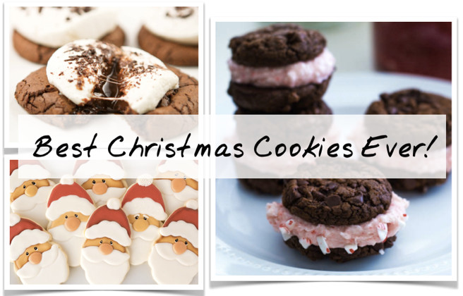 Christmas Cookies Recipes 2019  11 Best Christmas Cookies 2019 Easy Recipes For