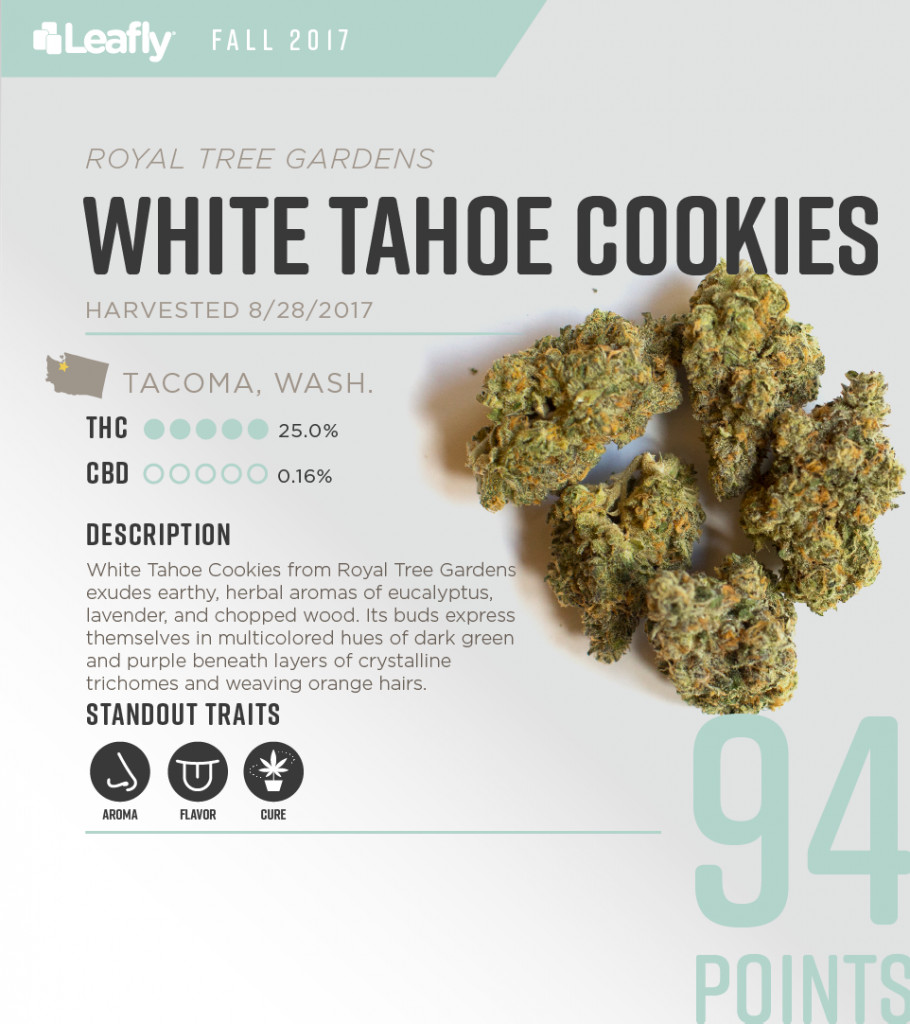 Christmas Cookies Strain  5 Best Smelling Cannabis Strains in Washington