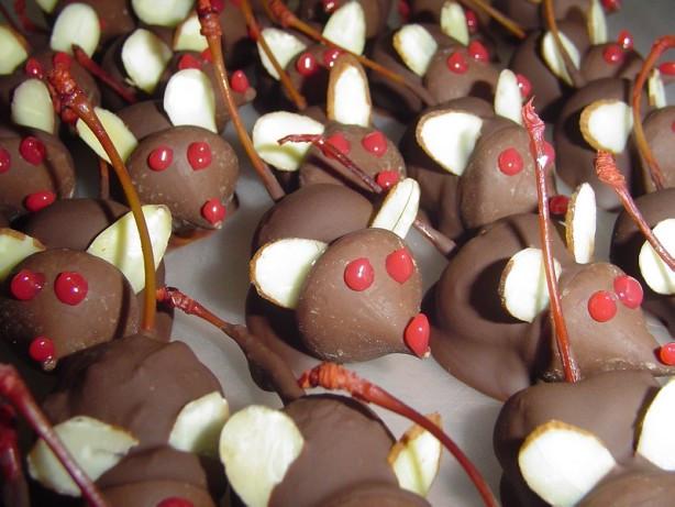 Christmas Mice Candy  Chocolate Christmas Mice Anytime Mice Recipe Food