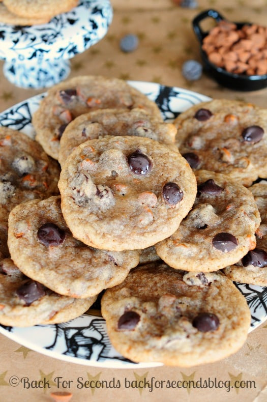 Cinnamon Christmas Cookies  Chewy Cinnamon Cookies with Dark Chocolate Chips Back