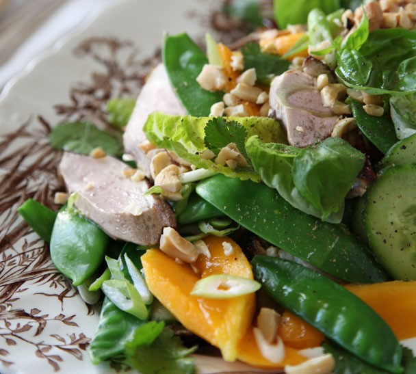 Cold Salads For Thanksgiving  Turkey and Mango Salad Annabel Langbein – Recipes