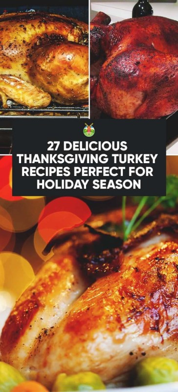 Delicious Turkey Recipes For Thanksgiving  27 Delicious Thanksgiving Turkey Recipes Perfect for