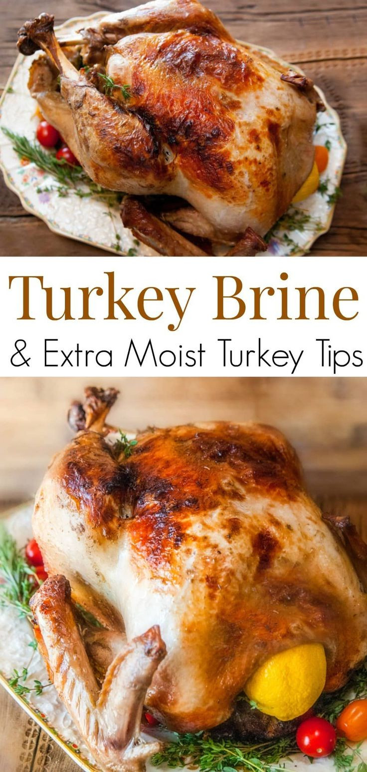 Delicious Turkey Recipes For Thanksgiving  Best 25 White meat ideas on Pinterest