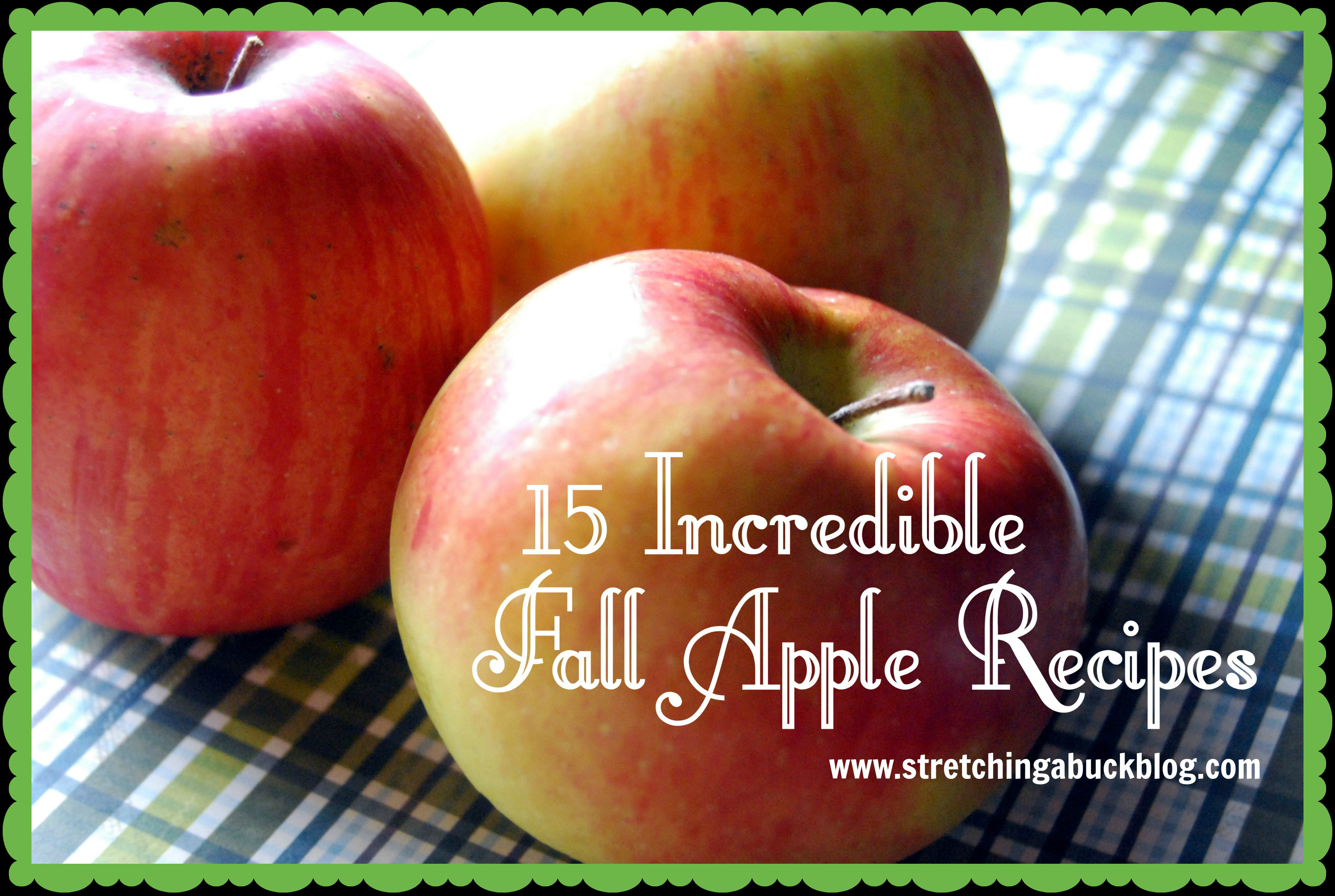 Fall Apple Recipes  15 Incredible Fall Apple Recipes Stretching a Buck