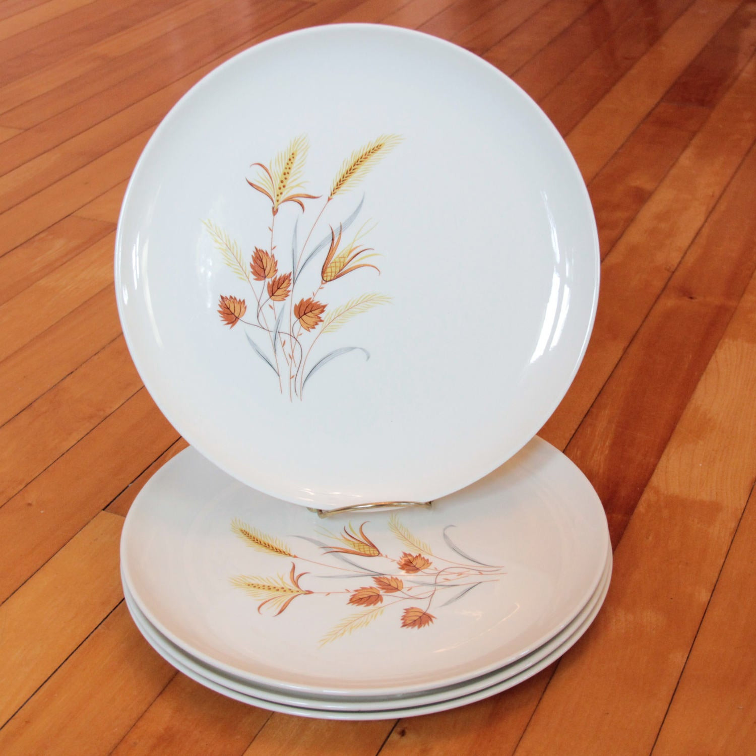 Fall Dinner Plates  Autumn Harvest Dinner Plates Every Yours Taylor Smith & Taylor