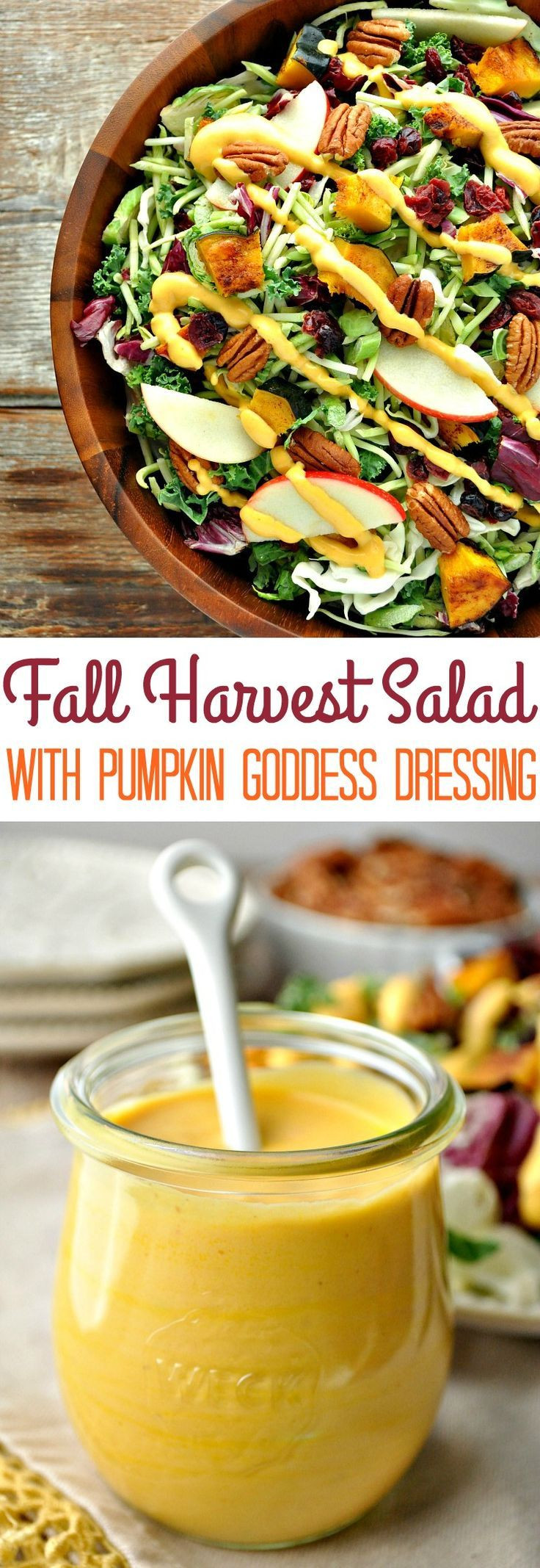 Fall Pumpkin Recipes  Fall Harvest Salad with Pumpkin Goddess Dressing