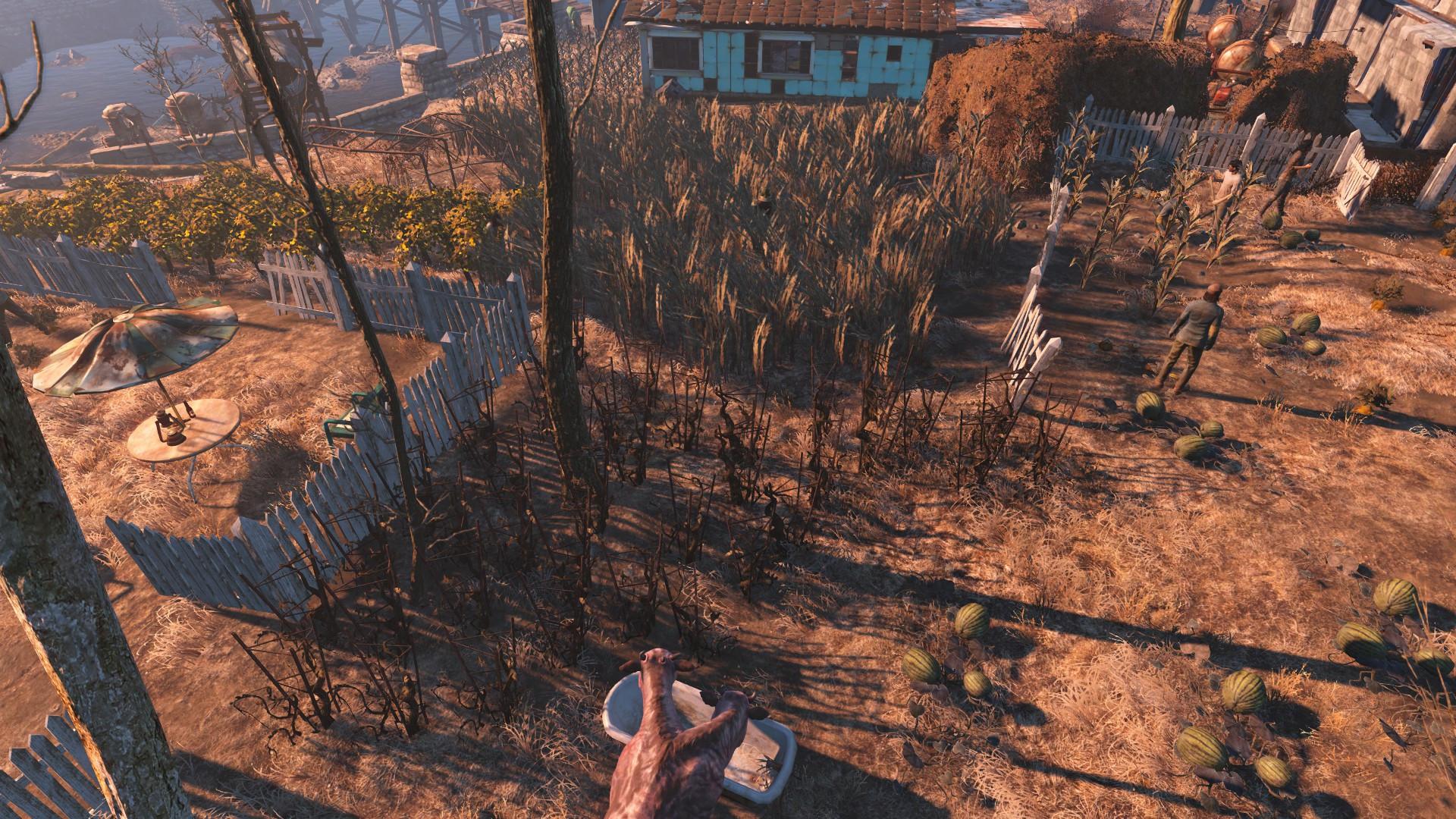 Fallout 4 Corn  Fallout 4 Page 103 Gaming GTAForums