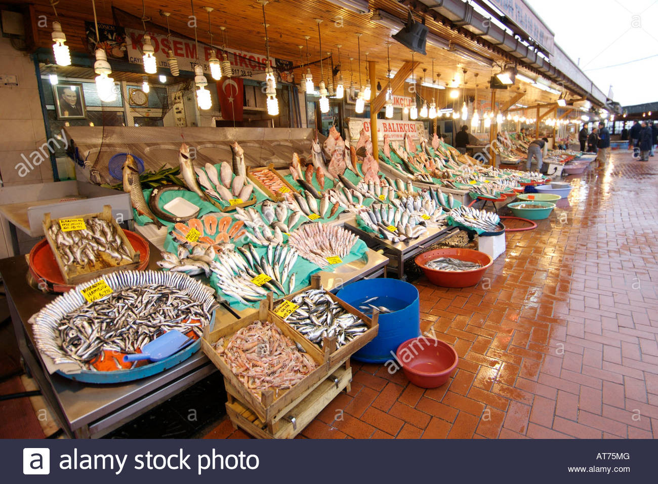 Fresh Market Thanksgiving Dinner 2019  Fresh fish for sale at the Kumkapi fish market in Istanbul
