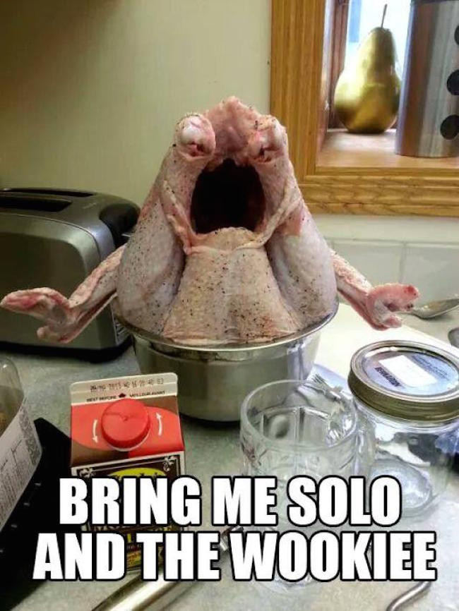 Funny Thanksgiving Turkey  The Best Funny Today s Internet Thanksgiving