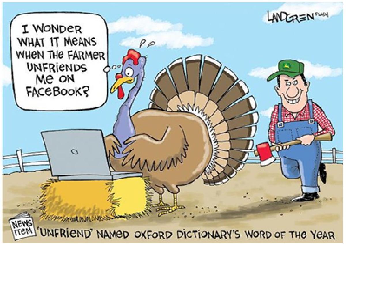 Funny Thanksgiving Turkey  Denae D Arcy November 2012