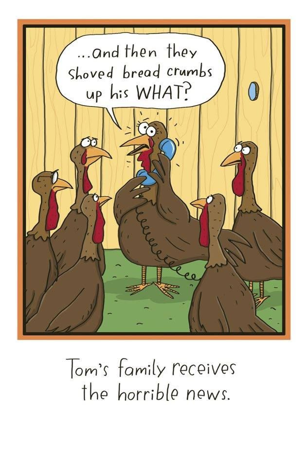 Funny Thanksgiving Turkey  81 best images about The Far Side on Pinterest