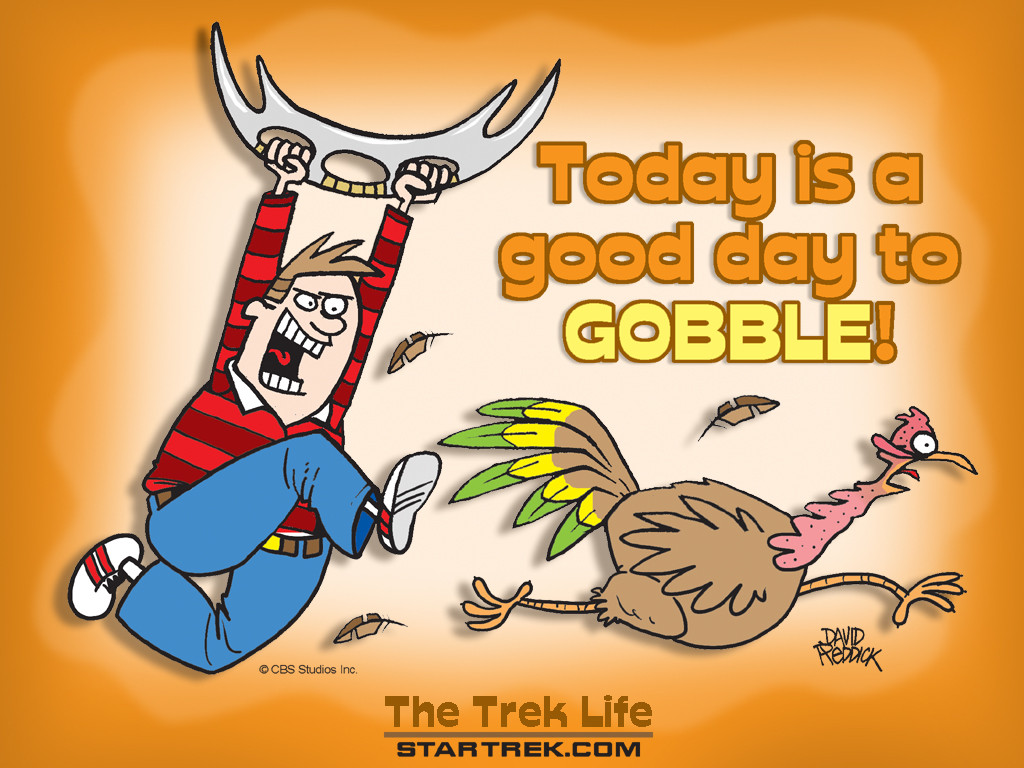 Funny Thanksgiving Turkey  The Bizarre and Weird Weird Funny Thanksgiving Wallpapers