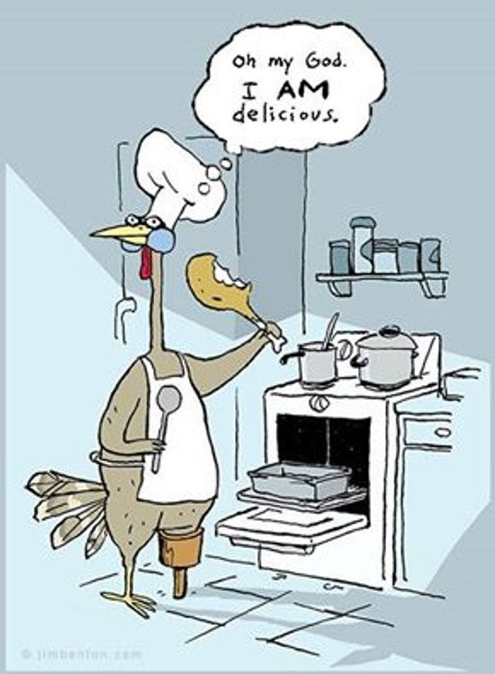 Funny Thanksgiving Turkey Pictures  12 Really Hilarious and Funny Turkey Thanksgiving Memes