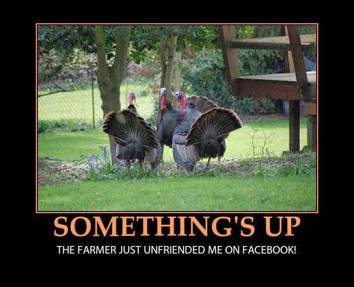 Funny Thanksgiving Turkey  Happy Funny Thanksgiving 2017