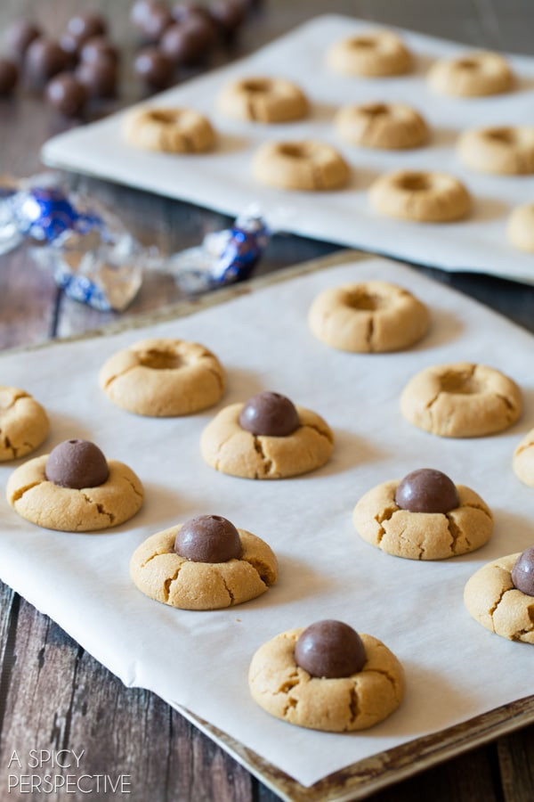 Halloween Peanut Butter Cookies  Chocolate Peanut Butter Spider Cookies Video A Spicy