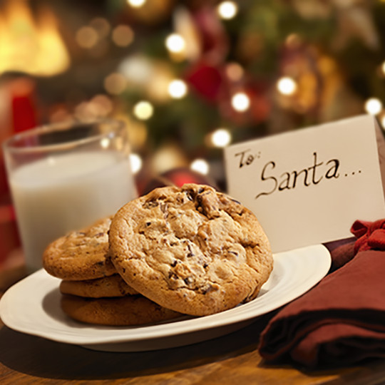 History Of Christmas Cookies  Springfield Why Do We Leave Out Cookies and Milk for