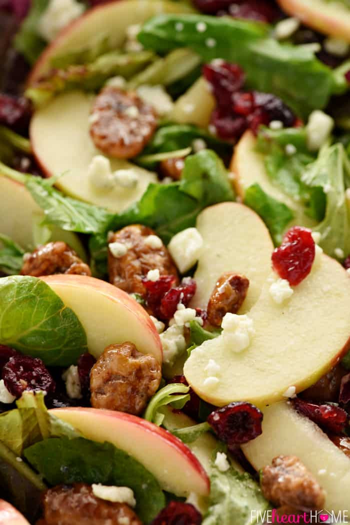 Holiday Salads Thanksgiving  Holiday Honeycrisp Salad