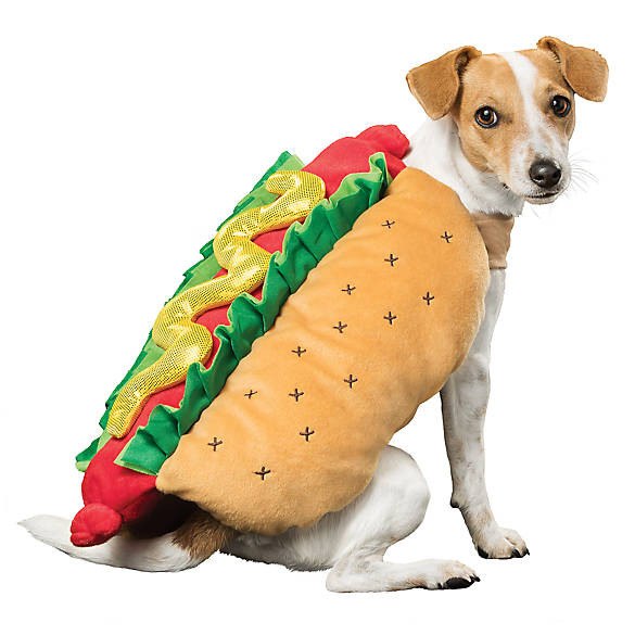 Hot Dog Halloween Costume For Dogs  Thrills & Chills™ Halloween Hot Dog Costume