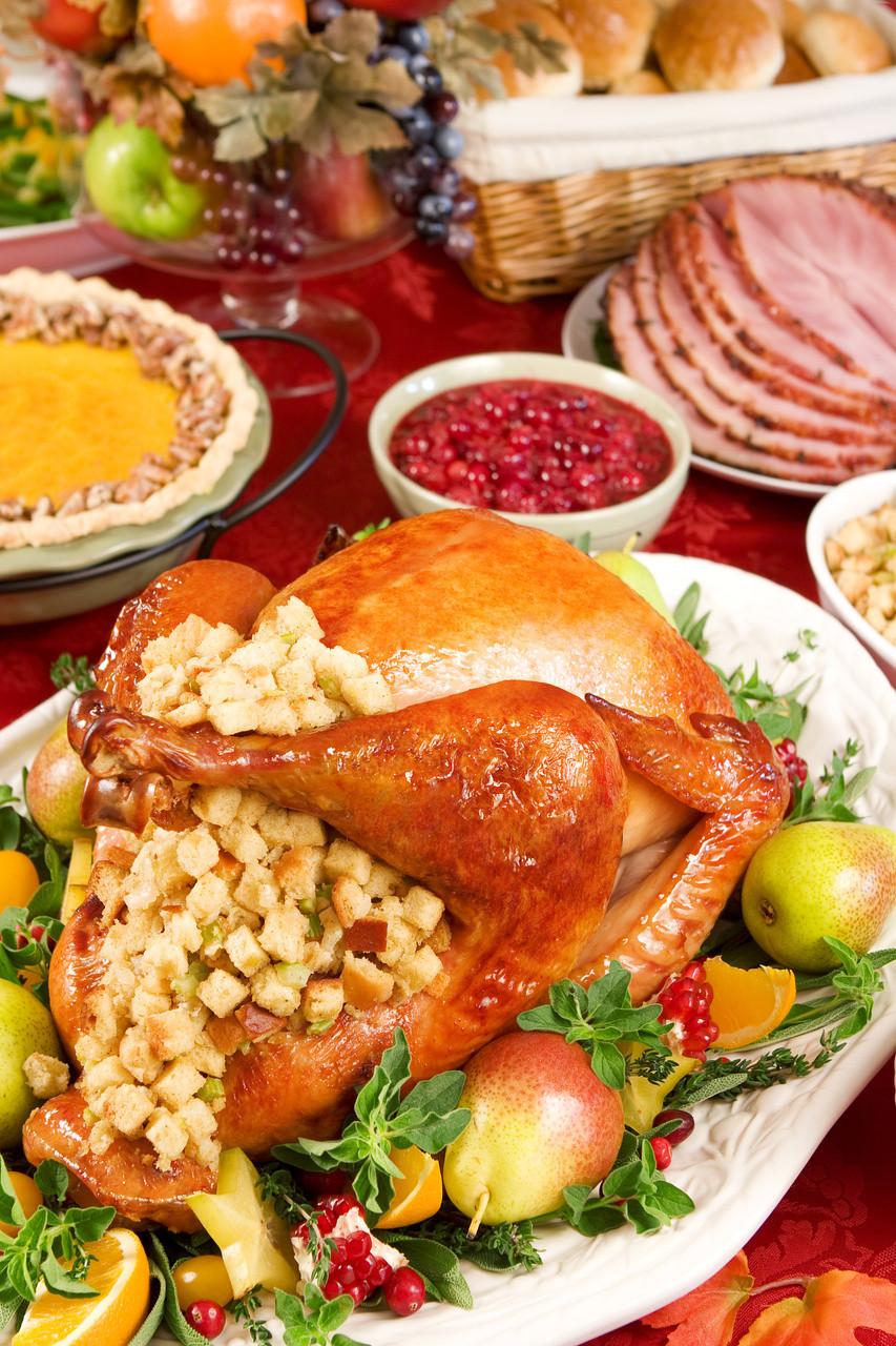 Ideas For Thanksgiving Dinner  Christmas Dinner Party Menu