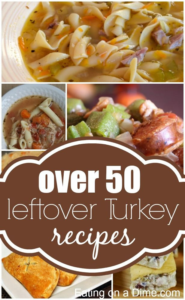 Leftover Thanksgiving Turkey Recipes  Leftover Turkey Recipes 50 Easy Turkey Leftovers recipes