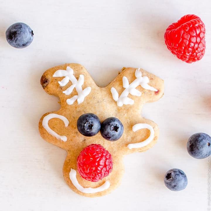 Low Sugar Christmas Cookies  Low Sugar Reindeer Cookies