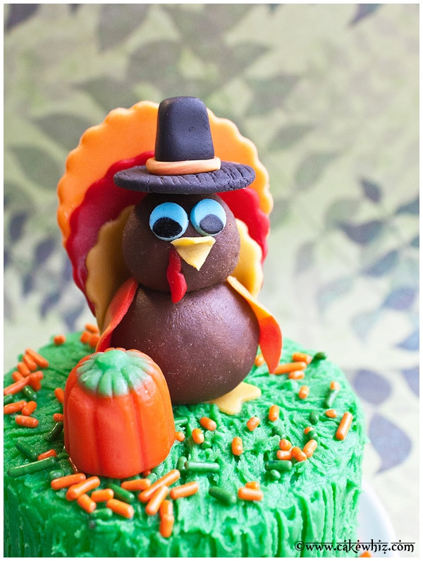 Making Thanksgiving Turkey  How to Make a Turkey Topper