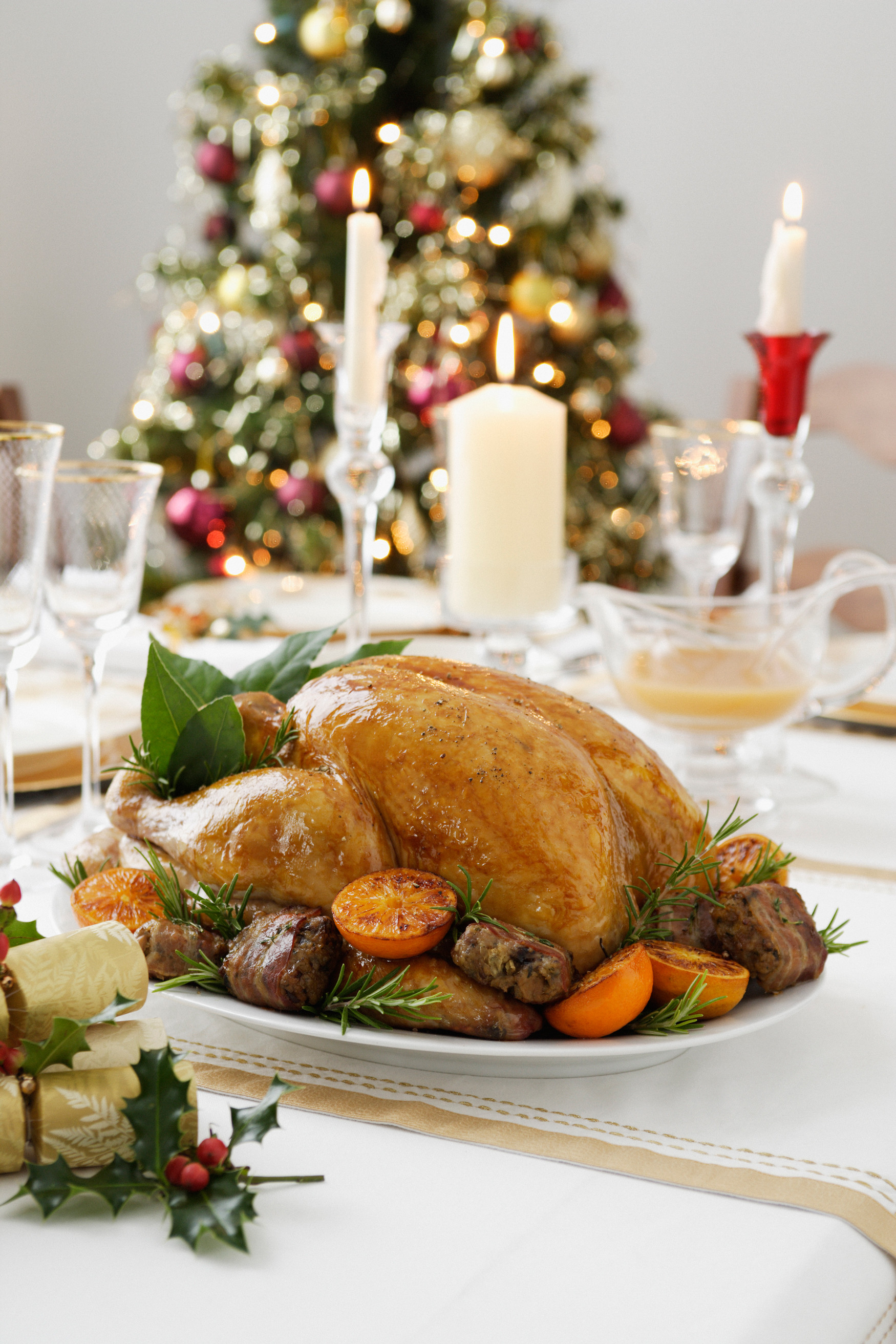 Menus For Christmas Dinners  5 Easy Christmas Dinner Menu Ideas plete Christmas